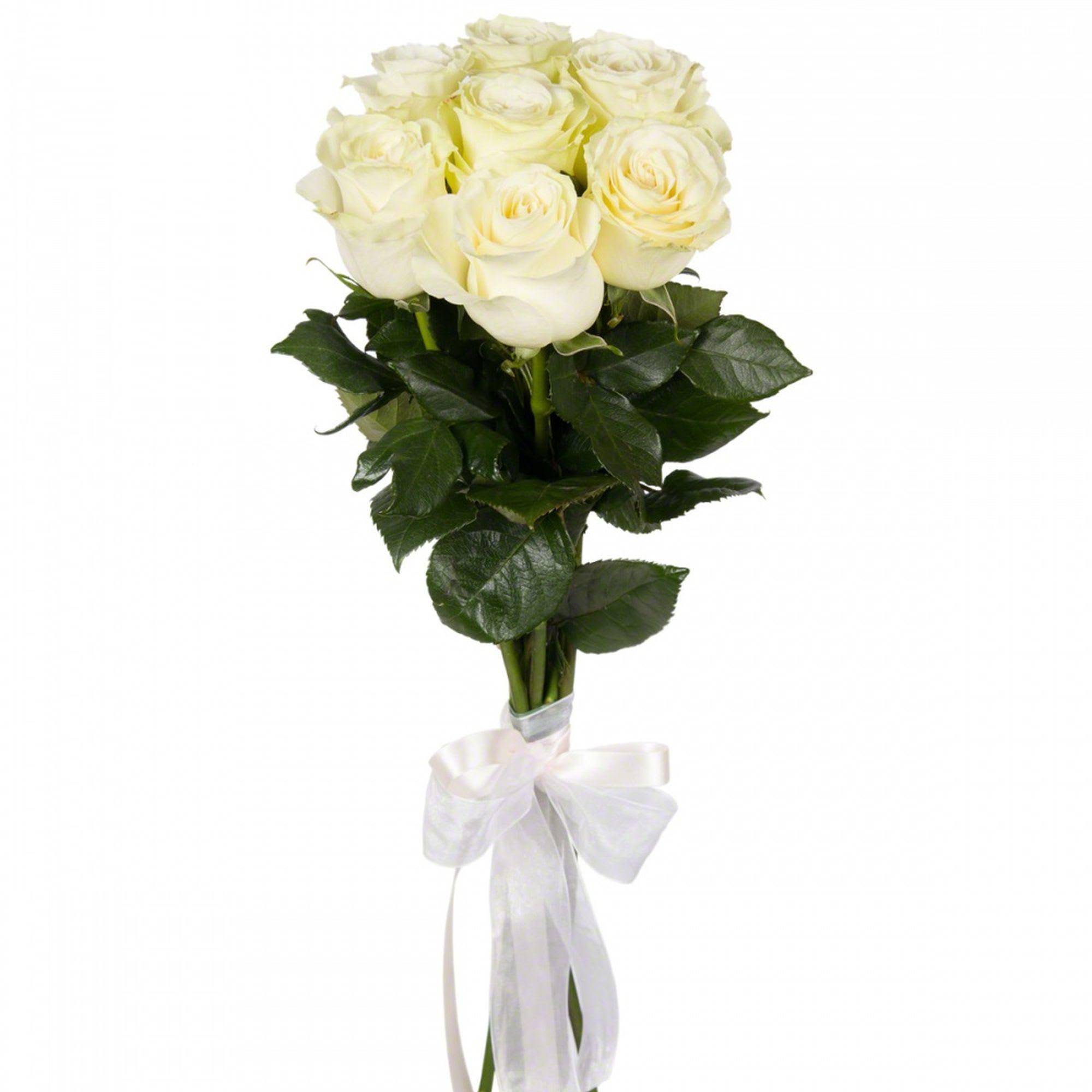 Девушки, купить цветы в спб 5 розы