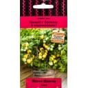 Семена Томат «Жёлтая шапочка»
