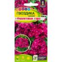 Гвоздика турецкая «Фиолетовая гора»