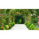 Фотообои флизелиновые «Арка из роз» 370х200 см