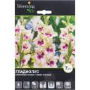 Гладиолус крупноцветковый «Амбер Мистик»