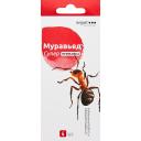 Средство для защиты от муравьев «Муравьед Супер» приманка 4 шт