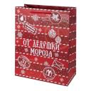 Пакет подарочный «От Дедушки Мороза» 26x32 см