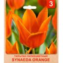 Тюльпан «Synaeda Orange» размер луковицы 10/11, 3 шт.