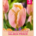 Тюльпан «Salmon Prince» размер луковицы 10/11, 3 шт.