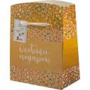 Пакет-коробка «Особый подарок» 22x13x20 см