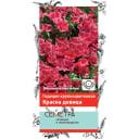 Семена Годеция крупноцветковая «Красна Девица»