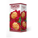 Пион травянистый Сорд Данс луковица 2-3