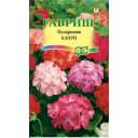 Семена Пеларгония садовая Капри F2