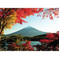 Фотообои флизелиновые «Гора Фуджи» 270х370 см