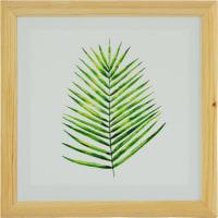 Постер в раме 40х40 см «Лист пальмы»