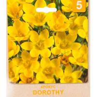 Крокус «Dorothy» размер луковицы 5/7, 5 шт.
