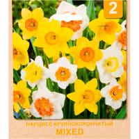 Нарцисс крупный «Mixed» размер луковицы 12/14, 2 шт.