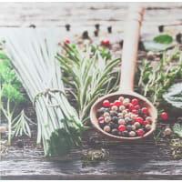 Картина на холсте «Травы и специи» 30x30 см