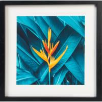 Картина в раме «Тропический цветок» 35x35 см