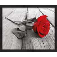 """Картина в раме """"Роза"""" 40Х50 см"""