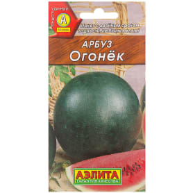 Арбуз «Огонёк»
