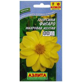 Георгина махровая жёлтая «Фигаро»