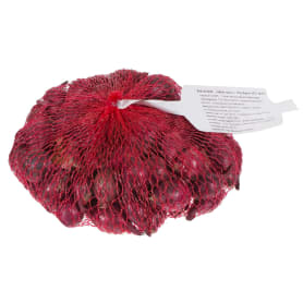 Лук-севок «Ред Барон» 14/21 упаковка 0.45 кг