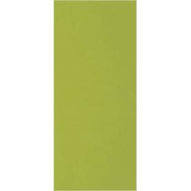 Дверь для шкафа Delinia «Васаби» 30x70 см, пластик, цвет зелёный