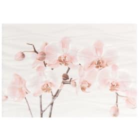 Вставка «Орхидея D» 28х40 см