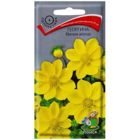 Георгина «Мигнон» цвет жёлтый