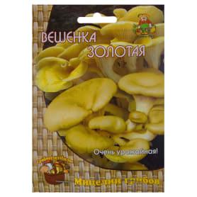 Гриб вёшенка золотая или лимонная «Мицелий» на древесном носителе