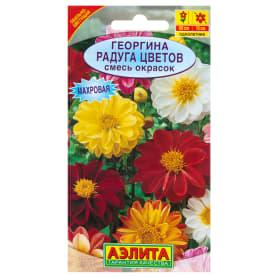 Георгины махровая «Радуга цветов» смесь окрасок