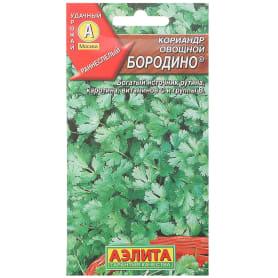 Семена Кориандр овощной «Бородино»