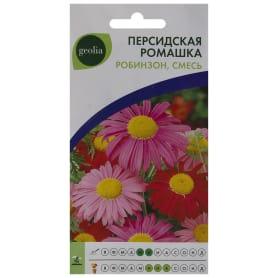 Ромашка персидская Geolia «Робинзон» смесь окрасок