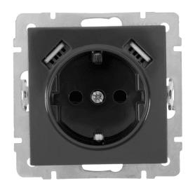 Розетка встраиваемая Werkel с заземлением, со шторками 2 разъема USB, цвет серо-коричневый