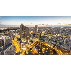 Фотообои флизелиновые «Город панорама» 370х200 см