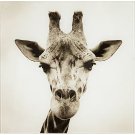 Картина на стекле 30х30 см «Жираф»