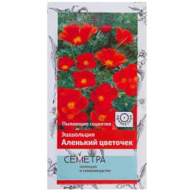 Эшшольция «Аленький цветочек»