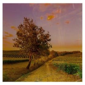 Картина на стекле 30х30 см «Дорога в поля»