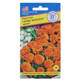 Бархатцы отклонённые «Бонанза», цвет оранжевый