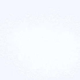 Стекохолст Glassband «Паутинка», 1х50 м, 40 г/м2