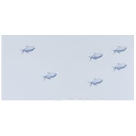 Декор Марис «Рыбки» 30х60 см цвет белый