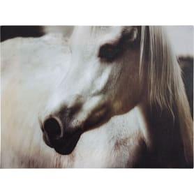Картина на холсте «Лошадь чёрно-белая» 30х40 см