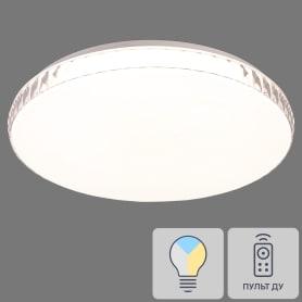 Светильник настенно-потолочный светодиодный Dina 2077/DL с пультом управления, 14 м², регулируемый свет, цвет белый