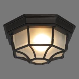 Светильник настенный уличный Pegas 100 Вт IP65 цвет чёрный