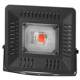Прожектор для рассады Эра Fito 50 Вт IP65