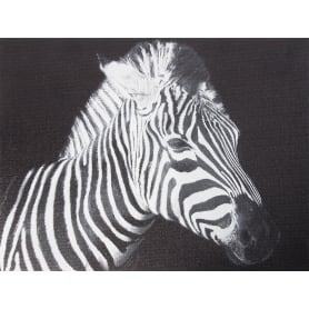 Картина на холсте «Зебра» 30х40 см
