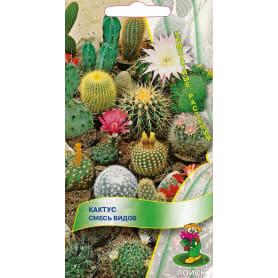 Семена Кактус смесь видов