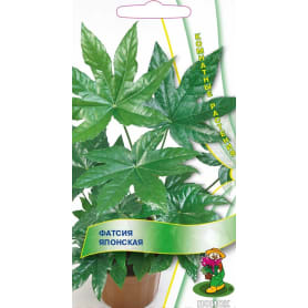 Семена Фатсия «Японская»