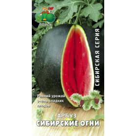 Семена Арбуз «Сибирские огни»