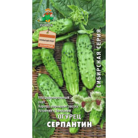 Семена Огурец «Серпантин»