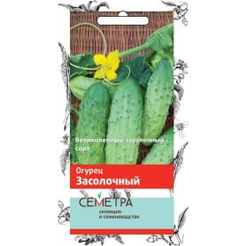 Семена Огурец Семетра «Засолочный»
