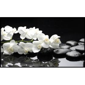 Картина в раме «Орхидеи на камнях» 60х100 см