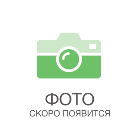 Грабли веерные Гардения 23 зуба пластик, цвет оранжевый и серый